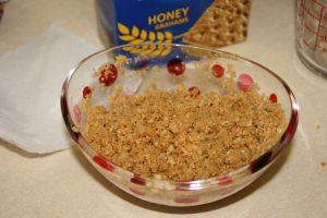 Graham Cracker & Butter Mixture
