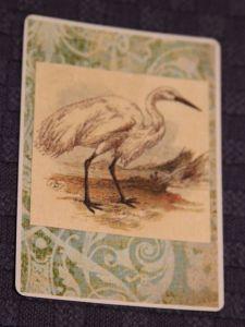 BF's Spirit Animal: Crane
